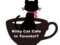 「Kitty Cat Cafe」オープンを目指す ジェニファー・モロゾフさんの描く夢