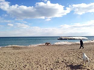 toronto-beaches-03