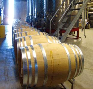 エコを追求しながら作られるワイン