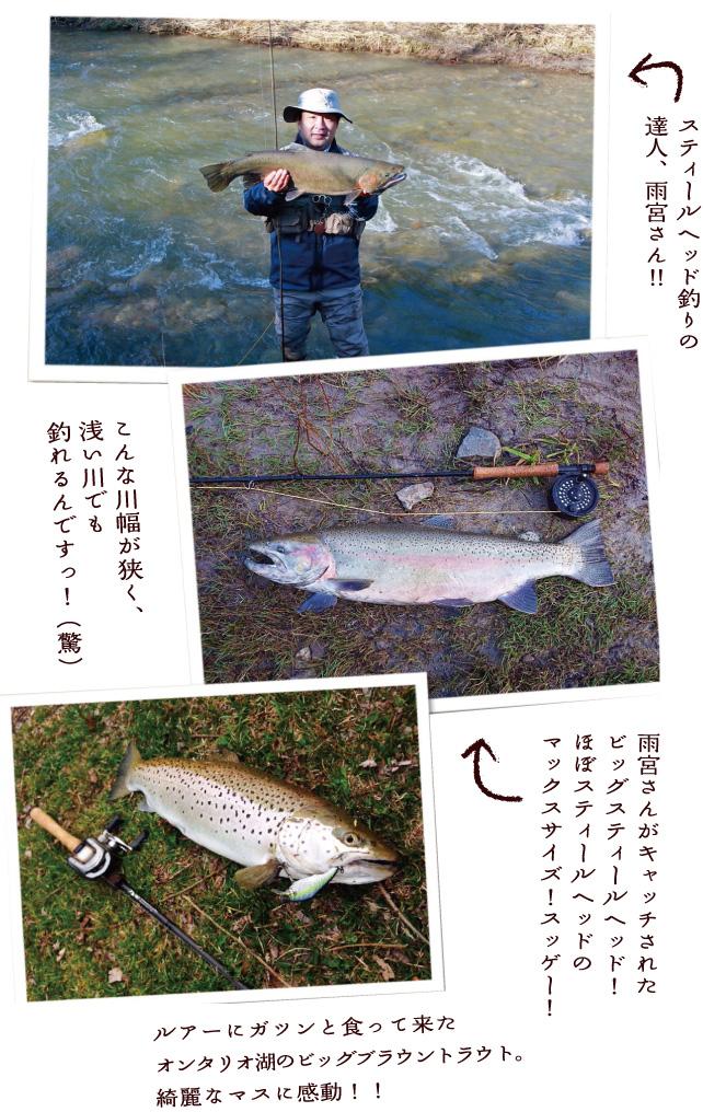 lurecaevers-fishing-diary-22