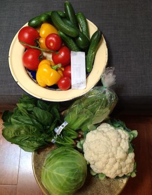 今日八百屋で買った野菜。〆て11ドル。袋に入ったチンゲンサイ以外は地元産。長い冬は輸入食材が中心になるので、夏は新鮮な風味を楽しみたい