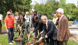 両市代表によってソメイヨシノが植えられた