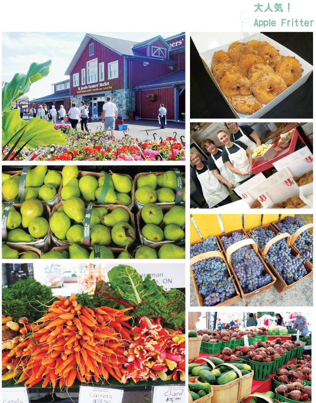buy-local-farmers-market-05