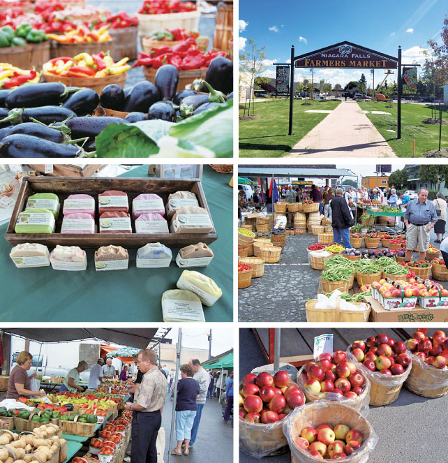 buy-local-farmers-market-06
