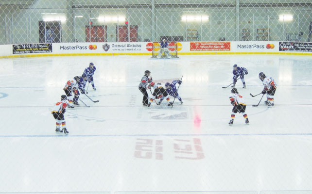 canadian-womens-hockey-league-05