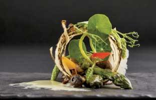 Salsify 特別な食材サルシファイを美しく食べやすく仕上げた一皿