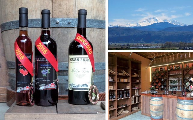 vancouver_winery18