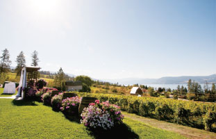 vancouver_winery21