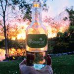 この夏スッキリ飲みたいしゅわしゅわシードル特集 | カナダ・シュワシュワドリンク特集