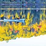 2,400以上の湖を湛えた カヌーイスト憧れのパドリング・パラダイスalgonquin  provincial park(アルゴンキン州立公園)