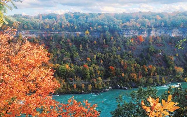 Niagara Park Way @herjohnny_hisjune
