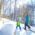 Blue Mountain & Collingwoodの冬を体験するスポットをご紹介!
