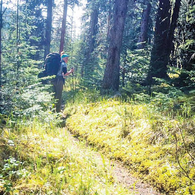 バックカントリーハイキングに挑戦 @Jasper National Park