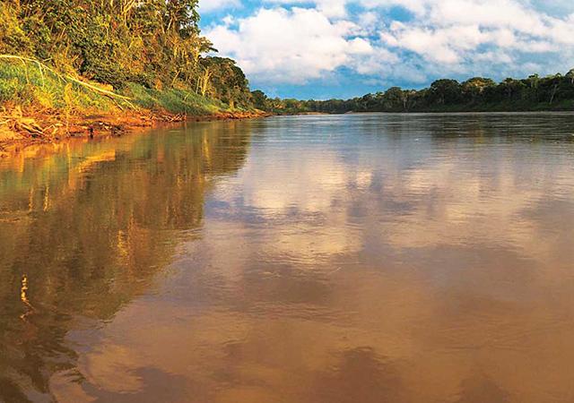 土色のアマゾン川