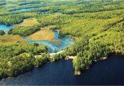 カナダのルーツ、ハイランドへ|オンタリオ州・アウトドアの魅力。楓の森の歩き方 第51歩