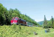 四季に応じて様々な景観や車窓を楽しめる「アガワ渓谷鉄道」in スー・セント・マリー | H.I.S.オススメ オトナの旅
