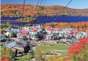 [番外編]秋の紅葉バスツアー、添乗員さんにインタビュー♪|CANADA発 近鉄ツアープランナーのここだけの話 その70