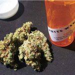 カナダが牽引する「医療大麻2.0時代」の到来|特集「カナダ・マリファナ合法化」