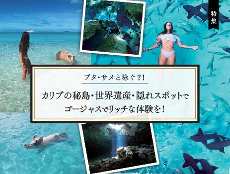 ブタ・サメと泳ぐ?! カリブの秘島・世界遺産・隠れスポットでゴージャスでリッチな体験を!