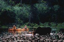 オンタリオの大地と共に30年!|オンタリオ州・アウトドアの魅力。楓の森の歩き方 第55歩