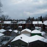 トロントで引きこもり的冬