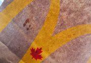 カナダと日本のマクドナルドの違い
