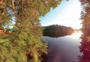 麗しの湖、癒しの森|オンタリオ州・アウトドアの魅力。楓の森の歩き方 第62歩