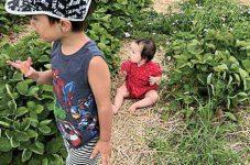 第3回  この夏1歳になる女の子と4歳の男の子の二人育児に奮闘するAさん|カナダの出産・育児体験インタビュー『ママ友トーク』