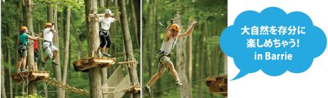 treetoptrekking