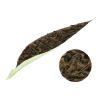 Organic-black-Darjeeling