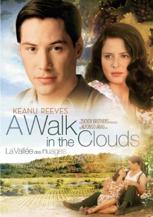 a-walk-in-the-cloud