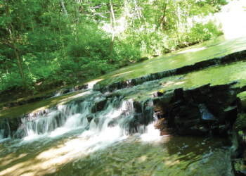 ハイキングコース横を流れる小川