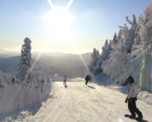 白面の世界を最高の気分で 滑走できるコース設定!!