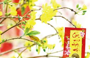 旧暦の新年を祝う際に飾られる花