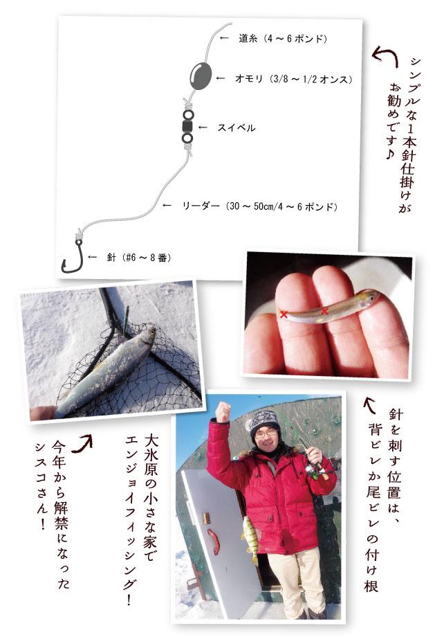 lurecaevers-fishing-diary-18