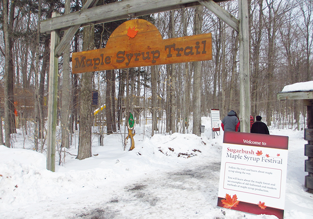 maple-syrup-festival-01