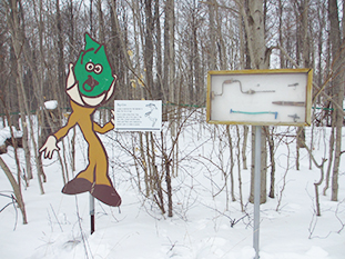 maple-syrup-festival-05