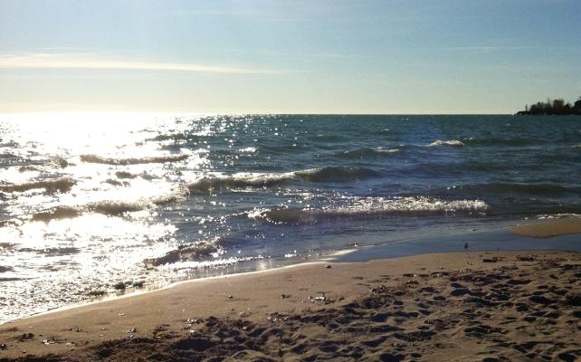 the-beaches-01
