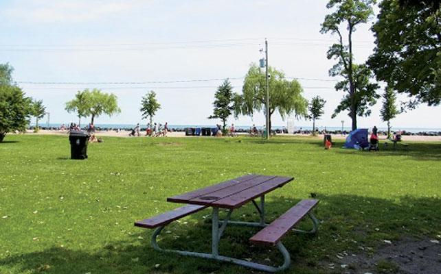 トロントアイランドでは影のあるピクニックテーブルを探すのも苦労するほど人気スポット