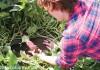 TORJA注目!Mama Earth Organics