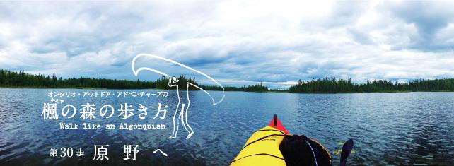 オンタリオ州北西部の手つかずの針葉樹の森へカヤックで漕ぎ入る