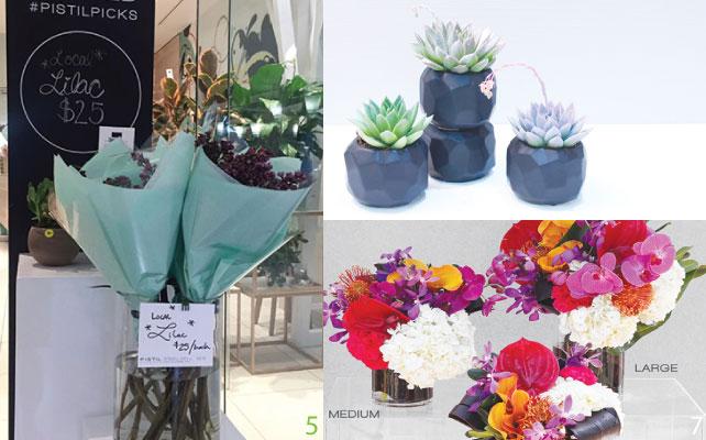 5 旬な花や時期的なイベントで人気な花束は店頭の見やすいところに 6 花だけではなく鉢植えも取り扱っている 7 イベントに合わせてサイズの選べるフラワーアレンジメント