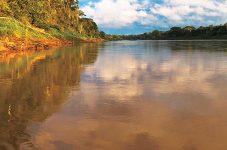 第5回 南米ペルー(2)アマゾン体験|紀行家 石原牧子の思い切って『旅』