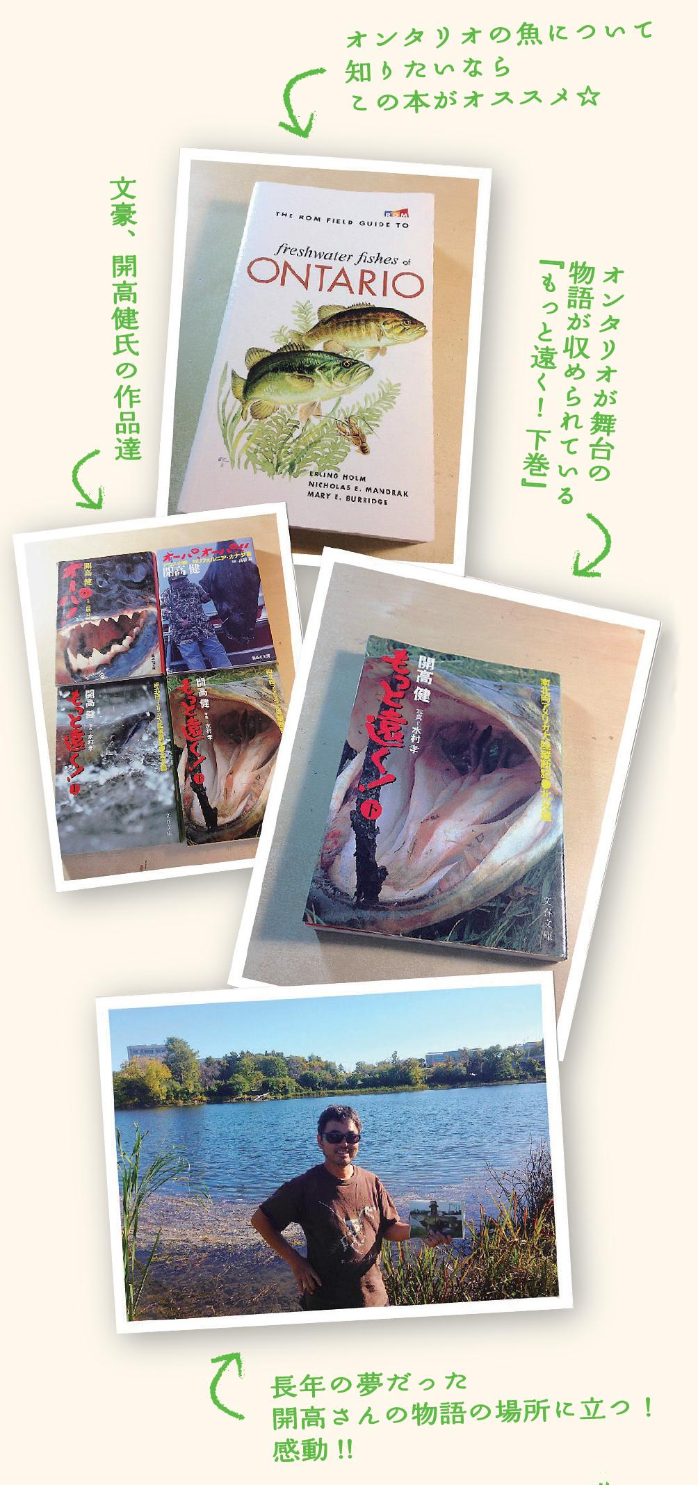 lurecaevers-fishing-diary-3901