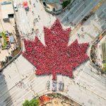 カナダ全土で話題沸騰!ウィニペグに出現した人間巨大メープルリーフの秘密に迫る