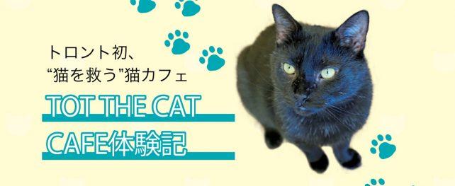 """トロント初、""""猫を救う""""猫カフェ TOT THE CAT CAFE体験記"""