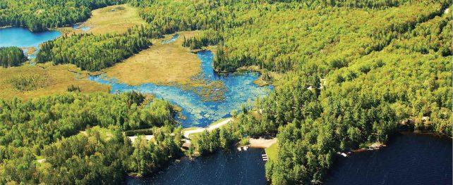 カナダのルーツ、ハイランドへ オンタリオ州・アウトドアの魅力。楓の森の歩き方 第51歩