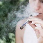カナダ、 合法後も数年は品不足により闇市場依存が続く見込み|大麻のいま