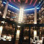 まるでハリーポッターの世界!図書館に行ってみた
