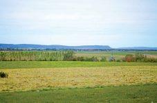 カナダ・ハリファックスの余り知られていない観光場所 | H.I.S.オススメ オトナの旅